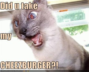 Did u take my CHEEZBURGER?!