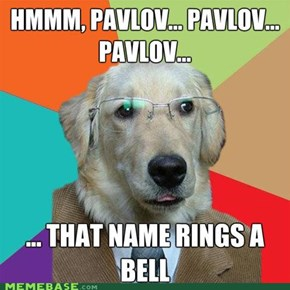 Business Dog: Pavlov