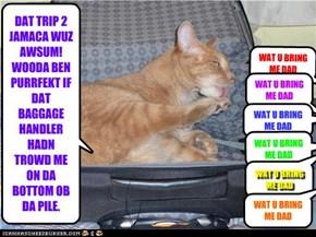 DAT TRIP 2 JAMACA WUZ AWSUM! WOODA BEN PURRFEKT IF DAT BAGGAGE HANDLER HADN TROWD ME ON DA BOTTOM OB DA PILE.