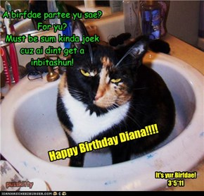 Happy Birthday Diana!