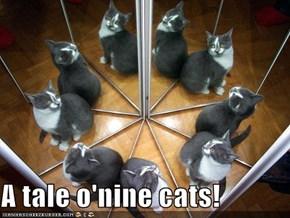 A tale o'nine cats!
