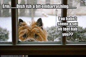 Erm........Dish ish a bit embarrashing.........