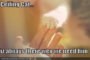 Ceiling Cat...  iz always there wen we need him