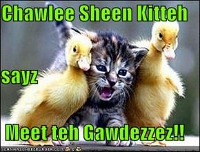 Chawlee Sheen Kitteh  sayz Meet teh Gawdezzez!!