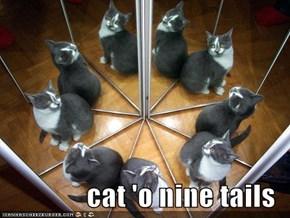 cat 'o nine tails
