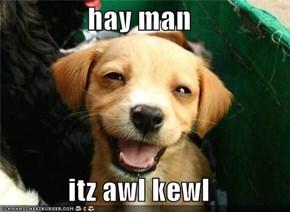 hay man  itz awl kewl