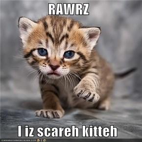 RAWRZ  I iz scareh kitteh