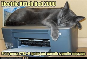 Electric Kitteh Bed 2000