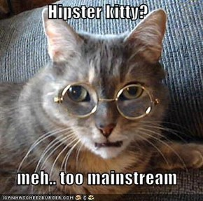 Hipster kitty?  meh.. too mainstream