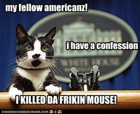 my fellow americanz!