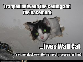 Trapped between the Ceiling and the Basement