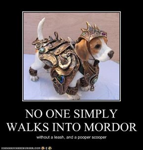 NO ONE SIMPLY WALKS INTO MORDOR