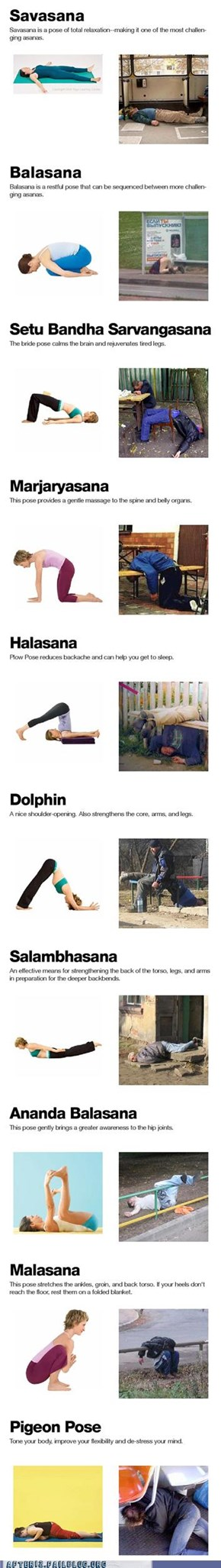 Drunk Yoga Chart