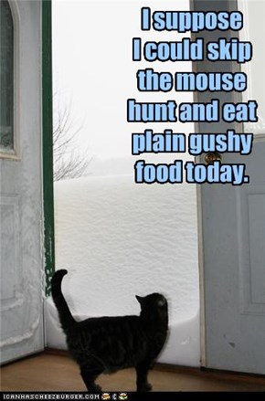 I suppose  I could skip the mouse hunt and eat plain gushy food today.