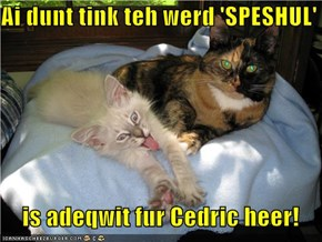 Ai dunt tink teh werd 'SPESHUL'     is adeqwit fur Cedric heer!
