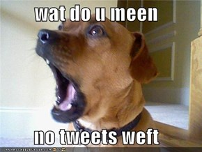 wat do u meen   no tweets weft