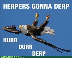 Eagle derp 5000
