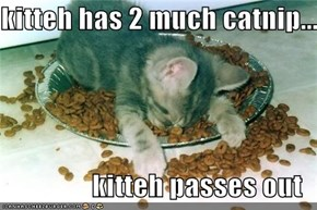 kitteh has 2 much catnip...  kitteh passes out