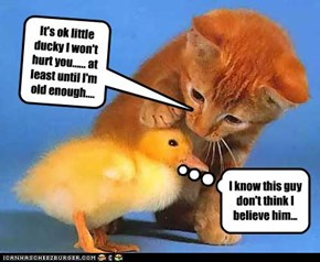 It's ok little ducky I won't hurt you...... at least until I'm old enough....