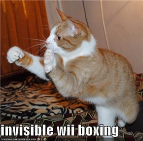 invisible wii boxing