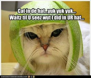 Cat in de hat...yuk yuk yuk... Waitz til U seez wut I did in UR hat...