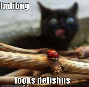ladibug  looks delishus