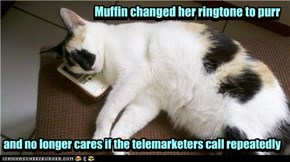 Muffin changed her ringtone to purr and no longer cares if the telemarketers call repeatedly