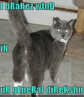 I bRaKez wInD iN uR gEneRal diReKshn