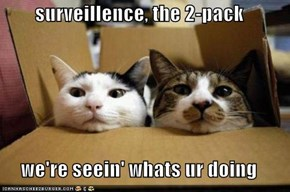 surveillence, the 2-pack  we're seein' whats ur doing