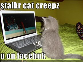 stalkr cat creepz  u on facebuk