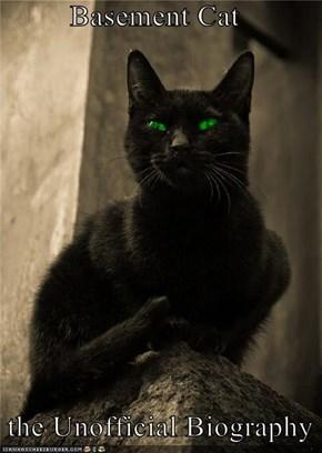 Basement Cat    the Unofficial Biography