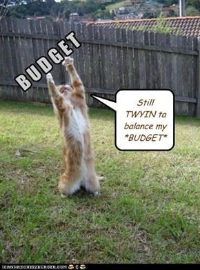 Still TWYIN ta balance my *BUDGET*