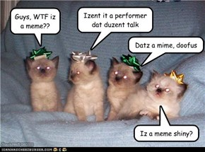 Itteh Bitteh Confused about Memez Committee