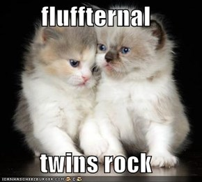 fluffternal   twins rock