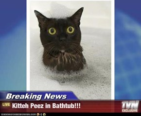 Breaking News - Kitteh Peez in Bathtub!!!