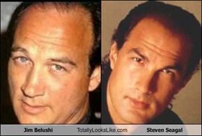 Jim Belushi Totally Looks Like Steven Seagal