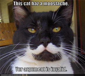 This cat haz a moostache.  Yur argument is invalid.