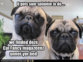 U gots sum splainin to do....