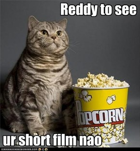 Film Fan Kitteh