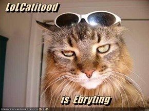 LoLCatitood              is  Ebryting