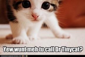 Yew wunt meh tu call Dr Tinycat?