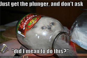 "Just get the plunger, and don't ask  ""did I mean to do this?""..."