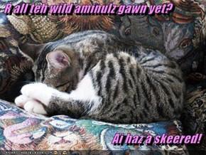 R all teh wild aminulz gawn yet?   Ai haz a skeered!