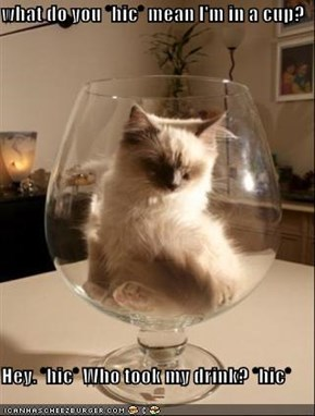 what do you *hic* mean I'm in a cup?  Hey. *hic* Who took my drink? *hic*