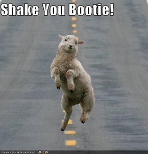 Shake You Bootie!