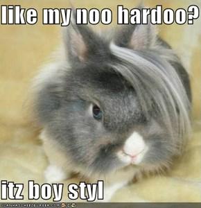 like my noo hardoo?  itz boy styl