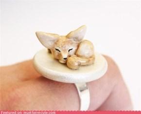 Sleepy Fennec Fox Ring