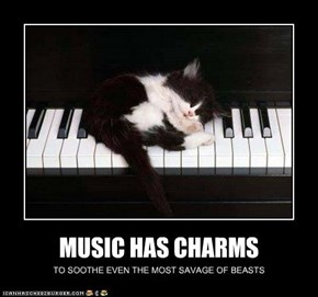 MUSIC HAS CHARMS