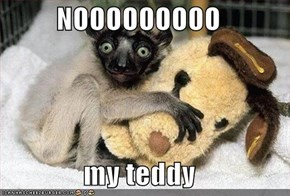 NOOOOOOOOO  my teddy