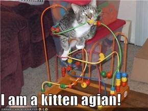 I am a kitten agian!